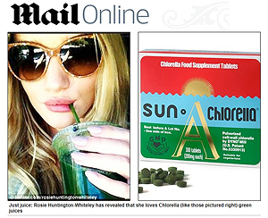 sun-chlorella4