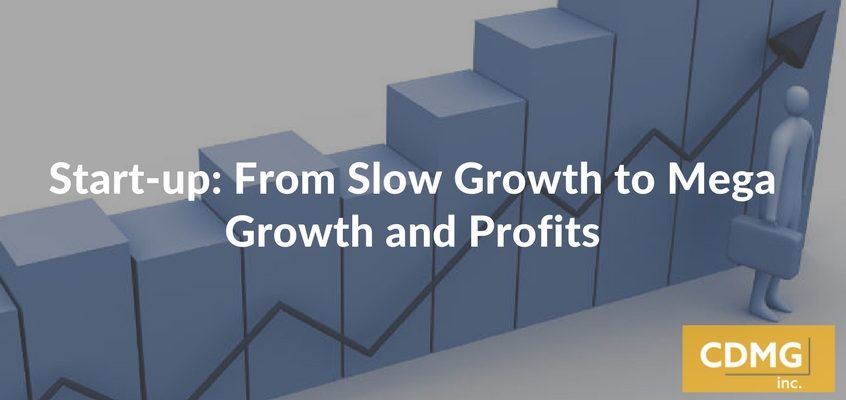 Start-up: From Slow Growth to Mega Growth and Profits