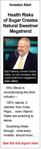 Stevia - Editorial Banner Ad - High Risks of Sugar