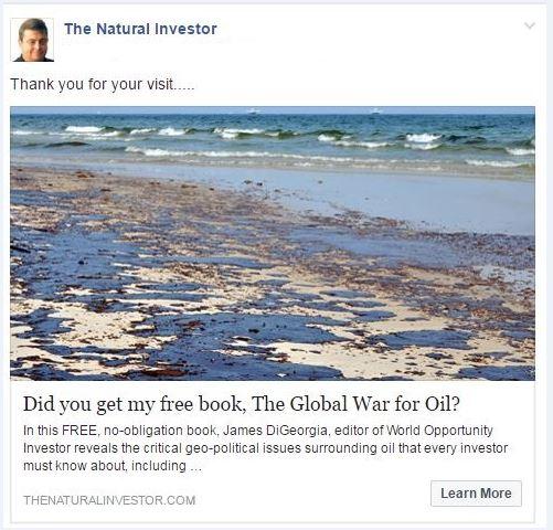 DiGiorgia Natural Investor Retargeting Adf
